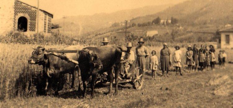 Azienda Agricola Bianchini