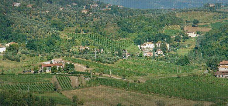 Azienda Agricola Valle Del Sole